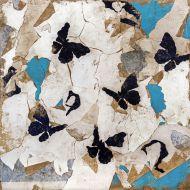 Le silence des papillons