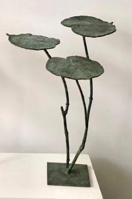 Nénuphars verts