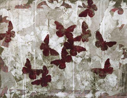 Lépidoptères rouges